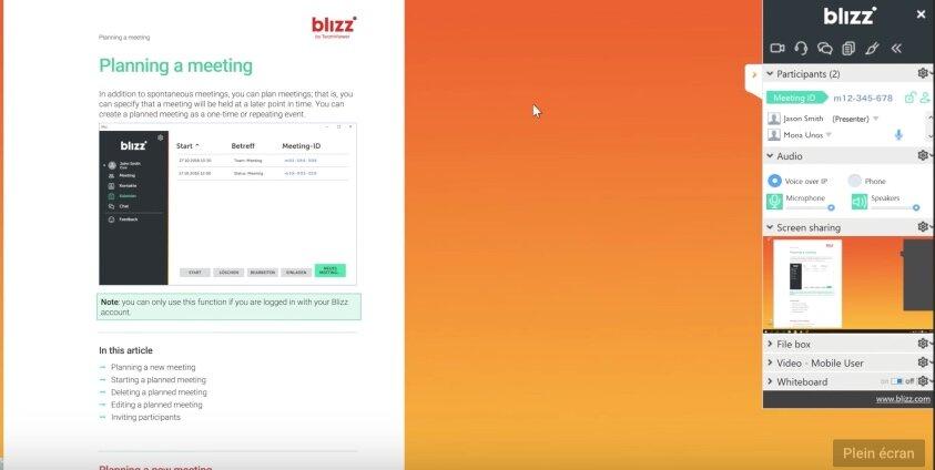 Blizz interface